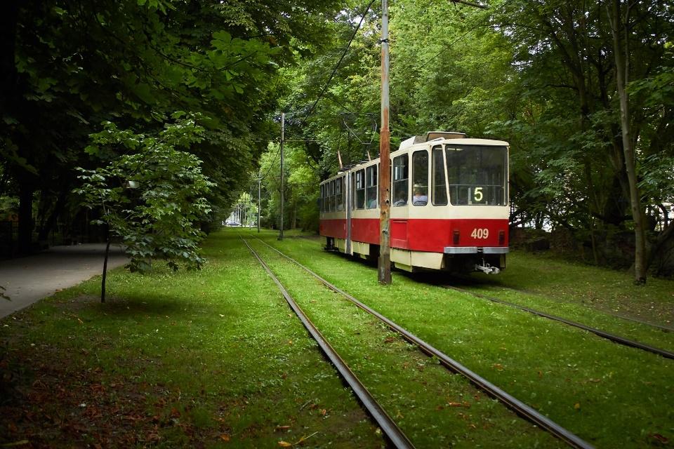 Зеленые аллеи с милыми трамвайчиками