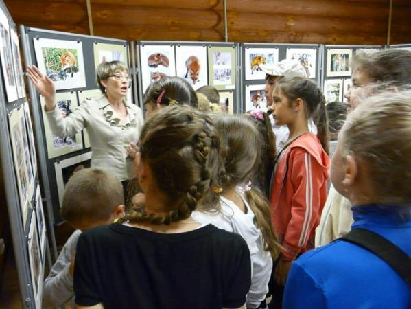 Знакомство с выставками