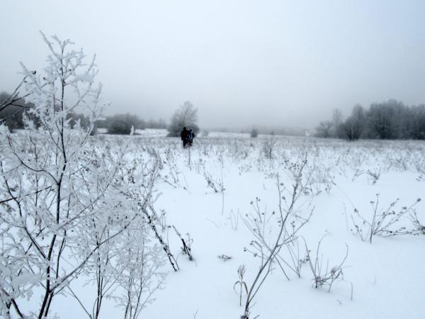 ...и через поля