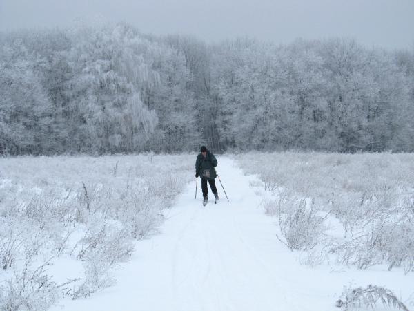 Ждем отставших и любуемся белоснежной красотой зимнего леса