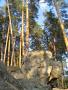 Я - экотурист: Рачейский бор, сольный поход 31 июля-2 августа 2014 г.