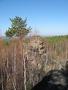 Скальники Олхинского плато