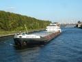 О Волге, рыбах, ГЭС, эвтрофикации и прочем...